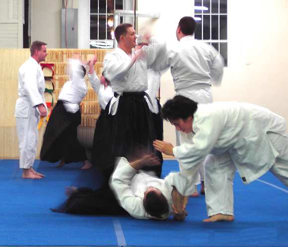 Aikido class Commerce Georgia