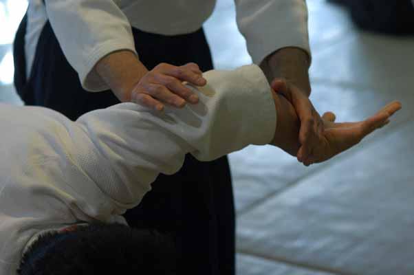 Endo Sensei aikido hands